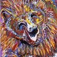 Zoobear